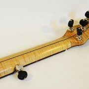 Cedar Mountain 6 string neck option