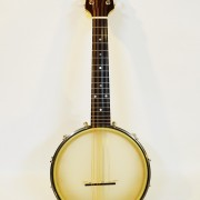 Cedar Mountain banjo mandolin