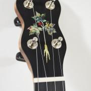 Appalachian Model with Abalone Ginseng