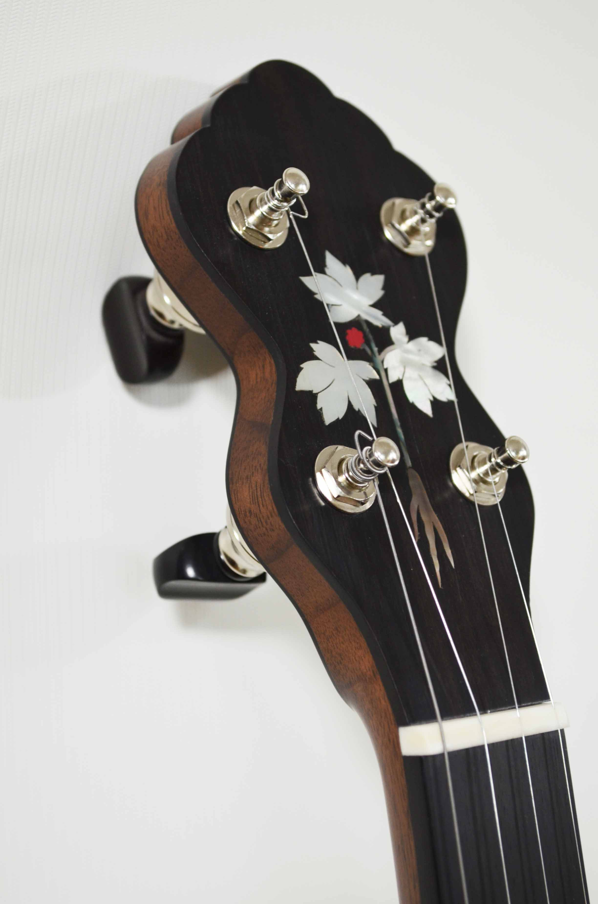 Walnut L Model with ebony back plate and ginseng inlay